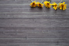 Yellow flowers. On the dark wood background Royalty Free Stock Image