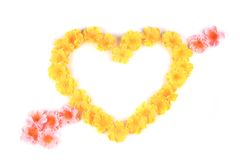 Yellow flowers in form of heart. Royalty Free Stock Photos