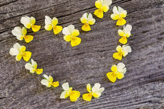 Yellow flowers in form heart  on wooden Stock Photography