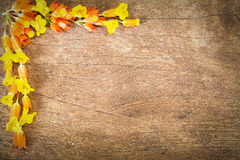 Yellow flowers formed  as border on top left corner on grunge vintage wooden background Royalty Free Stock Image