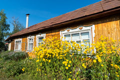 Yellow flowers in front of village house Royalty Free Stock Photography
