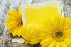 Yellow flowers with a gift card Stock Photo