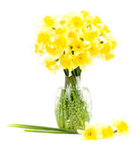 Yellow flowers in a glass vase Stock Images