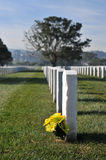 Yellow flowers on a grave in a cemetery. Royalty Free Stock Images