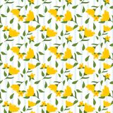 Yellow flowers and green leaves seamless pattern Stock Image