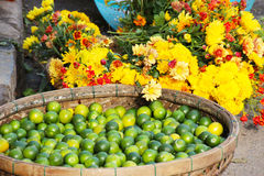Yellow flowers and green limes Royalty Free Stock Photography