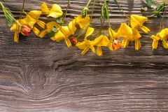 Yellow flowers on wood stock photo