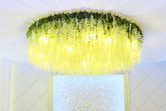Yellow flowers hanging from ceiling Royalty Free Stock Photography
