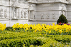 Yellow flowers of indian temple from London UK Royalty Free Stock Image