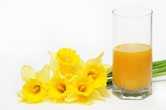 Yellow flowers with juice Royalty Free Stock Photography