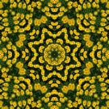 Yellow flowers kaleidoscope Stock Photography
