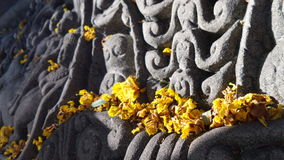 Yellow flowers kon Apsara angle sculpture Stock Photo
