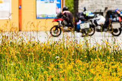 Yellow flowers and motorcycles on rest place. Travel tourism in summertime. Yellow flowers in the foreground and motorcycles on rest place in the background Stock Photography