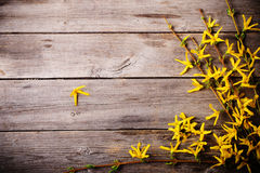 yellow flowers on old wooden background Stock Images