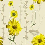 Yellow flowers pattern Royalty Free Stock Image
