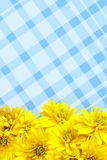 Yellow flowers petals background Royalty Free Stock Image