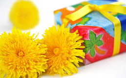 Yellow flowers and a present Royalty Free Stock Photography