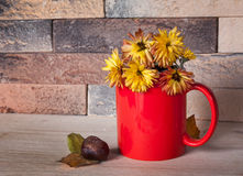 Yellow flowers in red cup Stock Photo