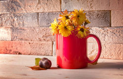 Yellow flowers in red cup Royalty Free Stock Photo