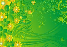 Yellow flowers and the sun. Yellow flowers with green leaves under beams of the stylised sun Stock Image