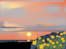 Yellow flowers at sunset illustration Stock Photography