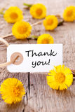 Yellow Flowers with Thank You. Yellow Flowers with a Tag with the Words Thank You on it Royalty Free Stock Image