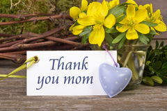 Mothers`s day Stock Photos