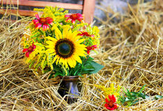 YELLOW FLOWERS IN A VASE ON HAY. Beautiful fall yellow flowers on hay Stock Image