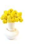 Yellow flowers in vase Stock Image
