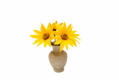 Yellow flowers in a vase Royalty Free Stock Photography