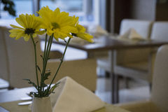 Yellow flowers waiting to be served by guests Stock Photography