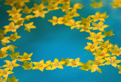 Yellow flowers in water. Yellow flowers in blue water royalty free stock photos