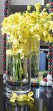 Yellow flowers in water vase with its reflection on floor and on mirror in the backdrop Stock Photography