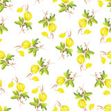 Yellow flowers watercolor seamless vector print Royalty Free Stock Image