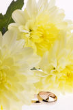 Yellow  flowers and  wedding rings Royalty Free Stock Image