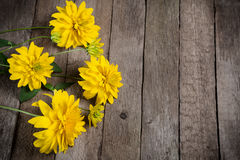 Yellow flowers on wooden background Stock Photo