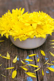 Yellow flowers on wooden board Royalty Free Stock Image