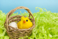 Yellow fluffy Easter chicken toy. Close up of a yellow Easter fluffy chicken toy in a small basket with an egg. Spring or Easter holiday image stock images