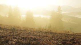 Yellow Fog in the Wooded Mountains stock video footage