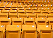 Yellow folding chairs lined on the stadium sport Stock Images