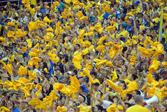 Yellow Football Fans Cheering Royalty Free Stock Image