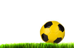 Yellow football on grass field Stock Photos