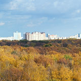 Yellow forest, urban houses, blue clouds Stock Photos