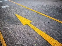 Yellow Forward sign on the road in the park stock image