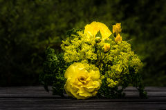 Yellow fragrance Royalty Free Stock Photography
