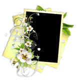 Yellow frame with apple tree flowers Royalty Free Stock Images