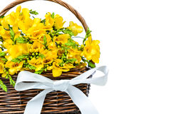 Yellow freesia flowers in the wicker Stock Photo