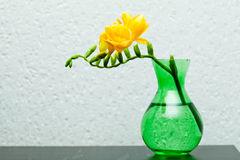 Yellow freesia in green vase Stock Photography