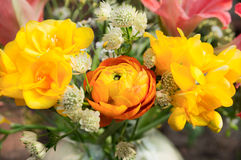 Yellow freesia and orange  buttercup bunch Royalty Free Stock Photo