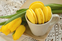 Yellow French macaron and yellow tulips on old book Royalty Free Stock Photos